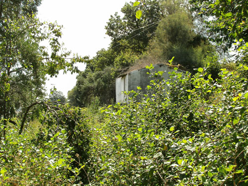 Casale in vendita marche casa da ristrutturare for Casa tradizionale giapponese significa